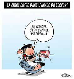 """Le dessin du jour : """"Nos amies les bêtes"""" par Dilem - 12 février 2013. #lasagne"""