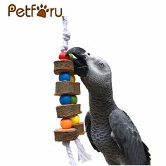 MrPrettyPet Has many Bird Toys. This Wood Hanging Chew Toy is Superb To Maintain Your Birds healthy Beak Parakeet Cage, Buy Birds, Wood Bird, Bird Toys, Cat Supplies, Solid Wood, Cool Things To Buy, Pets, Free Shipping