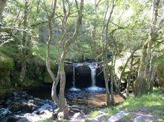Waterfall. Garwnant Forest near Merthyr Tydfil.