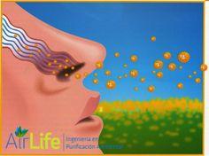 #airlife #aire #previsión #virus #hongos #bacterias #esporas #purificación  purificacion de aire Airlife te dice ¿qué pasa cuando inhalas partículas microscópicas? Cuando inhalas cantidades microscópicas de materia de partícula-también conocida como hollín-las partículas finas pueden adentrarse en tus pulmones y perjudicar su funcionamiento. http://www.airlifeservice.com