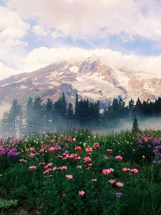 20 places to visit on the Ultimate American Road Trip, Mount Rainier National Park, Washington