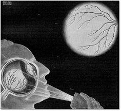 "Fritz Kahn -The Purkinje Vein Figure (Impulse-Conducting Network of the Heart), ""Das Leben des Menschen"", 1931."