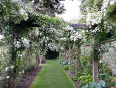 Castle Howard  Yorkshire  Rambling Rector on pergola
