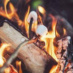 Yosemite Camping, Go Camping, Campfire Marshmallows, Quiet Storm, October Fall, February 15, Autumn Cozy, Autumn Fall, Autumn Feeling
