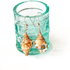 Sea Shells   Argentium Earrings