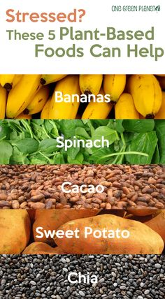 Foods for Reducing Stress: Bananas, Spinach, Cacao, Sweet Potatoes, Chia Seeds - Health Detox Healthy Mind, How To Stay Healthy, Healthy Eating, Plant Based Diet, Plant Based Recipes, Health And Nutrition, Health And Wellness, Mental Health, Detox Recipes