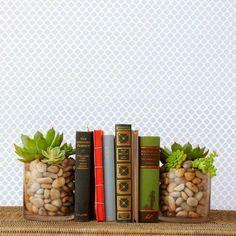 succulent bookends