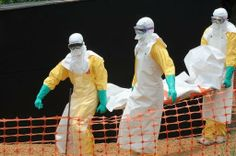 "Ebola, Msf: ""60 focolai attivi"" in Guinea, Liberia e Sierra Leone - Yahoo Notizie Italia"