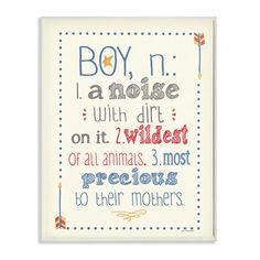 Stupell Industries The Kids Room Definition of Boy (n): A Noise with Dirt on It Typography Wall Plaque & Reviews | Wayfair