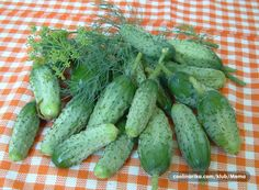Domaći kiseli krastavci — Coolinarika