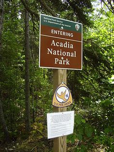 Acadia National Park - One of my favorite places in Maine Garden Types, Planting Vegetables, Planting Seeds, Acadia National Park, National Parks, Types Of Grass, Grand Parc, Avocado Tree, Camping Places