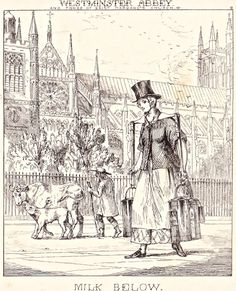 """London Cries & Public Edifices"" by John Leighton (1851): ""Of dealers in milk there are two classes – the one keeping cows, and the other purchasing it from dairymen in the outskirts and selling it on their own account."""
