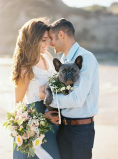 Beach engagement session with the cutest Frenchie: Photography : Jen Rodriguez Photography Read More on SMP: Beach Engagement, Engagement Pictures, Engagement Shoots, Wedding Pictures, Wedding Ideas, Country Engagement, Boho Wedding, Fall Wedding, Dream Wedding