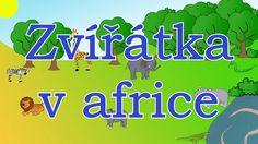 🦁🇨🇿Zvířátka v africe - animované zvuky zvířat pro děti a nejmenší - zvuky zvířat žijících v africe Safari, Youtube, Education, Africa, Onderwijs, Learning, Youtubers, Youtube Movies