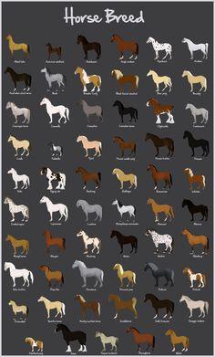 Breed Chart
