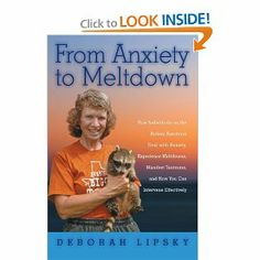 From Anxiety to Meltdown: How Individuals on the Autism Spectrum Deal with Anxiety, Experience Meltdowns, Manifest Tantrums, and How You Can Intervene Effectively: Deborah Lipsky: 9781849058438: Amazon.com: Books