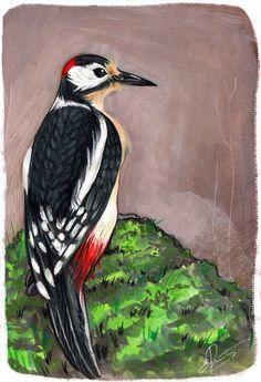 Spotted woodpecker in Gouache
