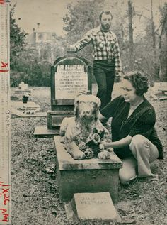 Abandoned pet cemetery has eerie, murderous past. Click through for interesting story .