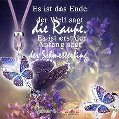 Es ist das Ende der Welt sagt die Raupe. Es ist erst der Anfang sagt der Schmetterling.