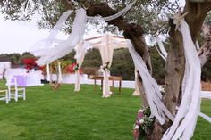 Kim & Daz Wedding by the sea side Sea Side, Arch, Outdoor Structures, Weddings, Garden, Animals, Longbow, Garten, Animales