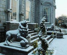 Castle durrow snow