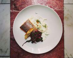 Dyletanci Restaurant  trout