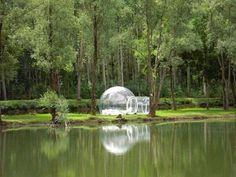 Albero o palla trasparente: i più strani alberghi francesi