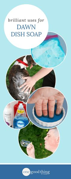 I've cut my household cleaners in half! Dawn dish soap is useful for so much more than just washing dishes! Check out this list of nearly 30 other uses for that blue bottle. Household Cleaning Tips, Cleaning Recipes, House Cleaning Tips, Spring Cleaning, Cleaning Hacks, Cleaning Schedules, Household Cleaners, Cleaning Supplies, Household Products
