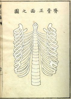 Kaishi Hen (Analysis of Cadavers), published in Kyoto in exquisite woodcut illustrations by Aoki Shukuya Medical Illustration, Illustration Art, Skull And Bones, Illustrations, Japanese Art, 18th Century, Ephemera, History, Prints