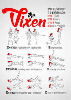 Vixen Workout                                                       …