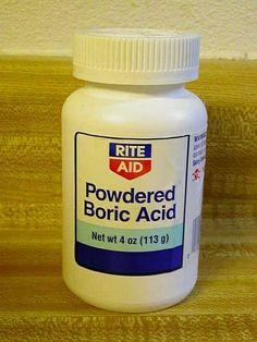 sweet sugary boric acid ant bait | recipe | boric acid ants, boric
