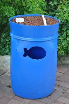 There you have it, your i-barrel aquaponic system is finished and operational. Check the flood level of the water in your growbed, you may need to take out the stand pipe and cut a little bit off. You don't want the water flooding at the surfac [...]