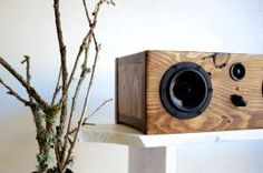 Cool Speaker Made From Reclaimed Wood!