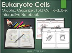 The Eukaryote Cell Fold-Out foldable is specifically designed for a secondary science course and covers the main organelles found in ALL eukaryotic cells. Inside there is a cell for each Eukaryotic kingdom: Protist, Plant, Animal, and Fungus. Students will label the organelles for each kingdom and describe the special organelles that are unique to each kingdom.
