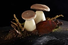 Can you guess what gourmet treat is hidden under the skin of Chef Uwe's latest creation? These mushrooms are actually tiramisu-flavoured and we think they are truly irresistible - do you agree? Why not come and try them at the Michelin-starred Mandarin Grill + Bar.