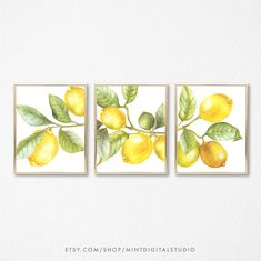 Watercolor Lemon Wall Art, Set of 3 Yellow Lemon Print, Kitchen Decor Yellow, Fruits Print, Fruit Print Art, Lemon Artwork, Lemon Wall Print de MintDigitalStudio en Etsy https://www.etsy.com/es/listing/574885184/watercolor-lemon-wall-art-set-of-3