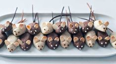 Mouse cookies...would be cute on a wedge of cheese cake. Or rather, cake shaped like wedge of cheese. Or both...
