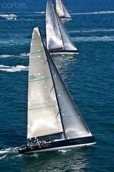 Sailing - Regatta