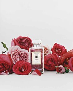 "Jo Malone Red Roses:   ""Composed of seven types of roses from around the world, Red Roses is a surprisingly clean, voluptuous scent. With a heart of crushed violet leaves and hints of lemon and spearmint, it unfolds like a bouquet of fresh-cut flowers.""  Combine with Grapefruit, Pomegranate Noir, French Lime Blossom, Nutmeg & Ginger, Wild Fig & Cassis"
