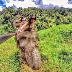 Ride an elephant. Climb atop one of these gentle giants in Phuket, Thailand for a ride through the tropical rainforest.