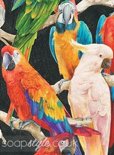 The Carters' Parrot Wallpaper