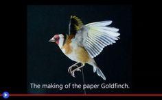 Penne, bei pennelli, di lucertole ed uccelli #carta #arte #scultura #pittura #olanda