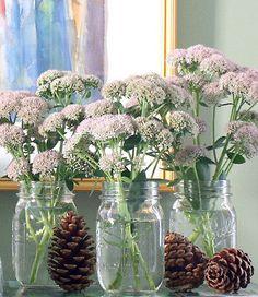 Autumn vignettes with pine cones and mason jars
