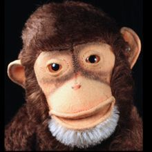 Gorgeous Steiff Jocko Chimpanzee (not Monkey!) ID Talks! Antique Toys, Vintage Toys, Doll Toys, Dolls, Antique Teddy Bears, Monkey Pattern, Steiff Teddy Bear, Monkey Business, Chimpanzee