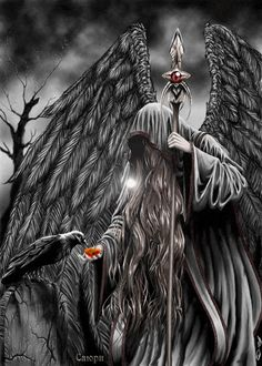 Corvo e o anjo