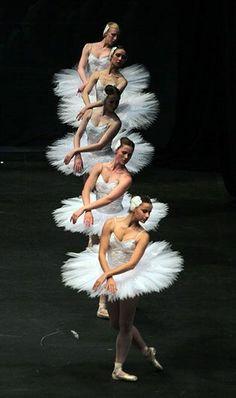 Le Corps du Ballet in Swan Lake Shall We Dance, Just Dance, Dance Photos, Dance Pictures, Ballet Companies, Dance Movement, Ballet Photography, Ballet Beautiful, Ballet Dancers