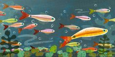 Illustration Friday, Children's Illustrator: Amy Schimler