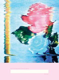 Pipilotti Rist All ergic Rose, 2007 Still life photo print on rag paper Pipilotti Rist, Vaporwave Art, Glitch Art, Collage Art, Contemporary Art, Photos, Photographs, Graphic Design, Fine Art