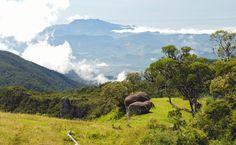 Casario, café e caminho do ouro em São Luiz do Paraitinga, Cunha e Bananal, tudo…