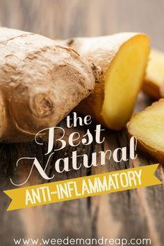 The BEST Natural Anti-Inflammatory #natural #naturalhealth #ginger